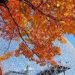 Cartão-Postal, Biosfera de Montreal