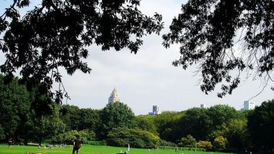 An-Ordinary-Day-at-Central-Park.jpg