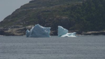 icebergs-nl.jpg